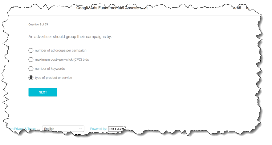 ✅✅?An advertiser should group their campaigns by: – School4Seo
