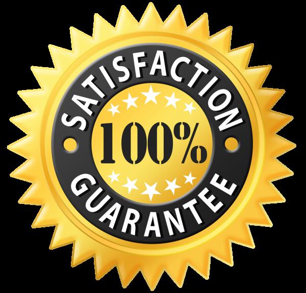 100Satisfection